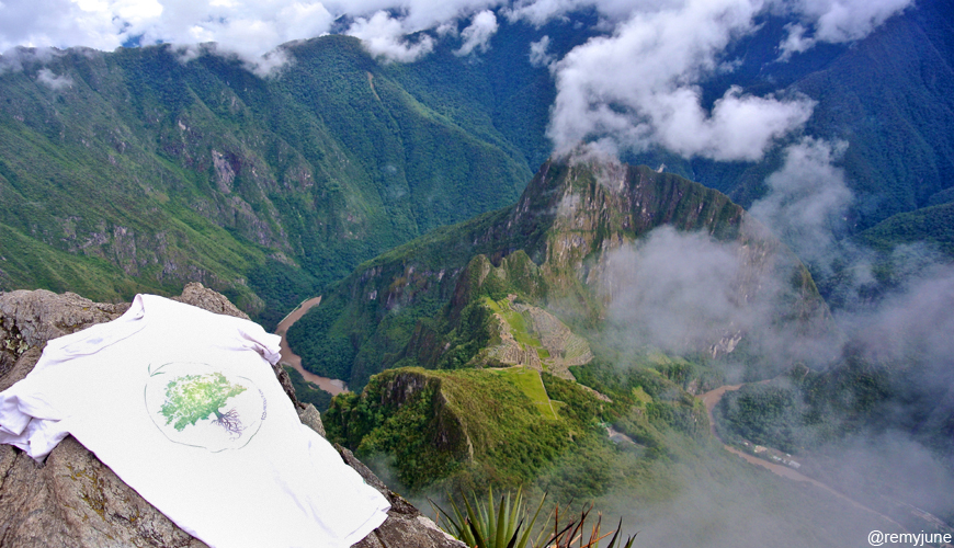 T-Shirt Druid Tree au Machu Picchu